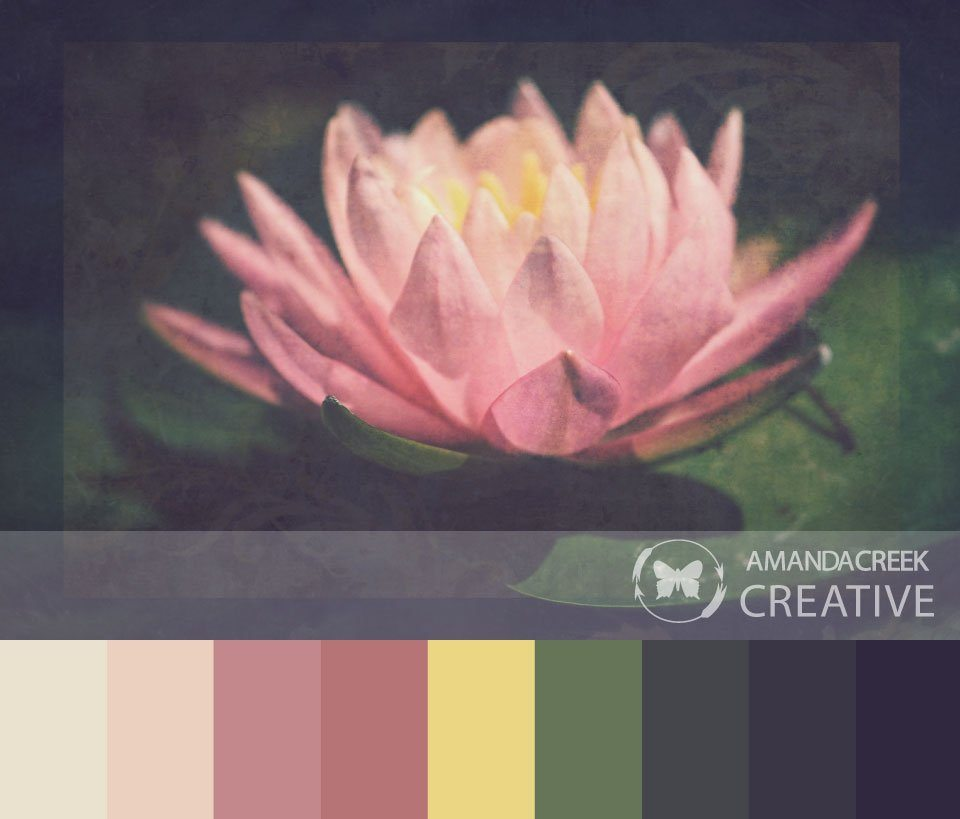 Color-Palette-2