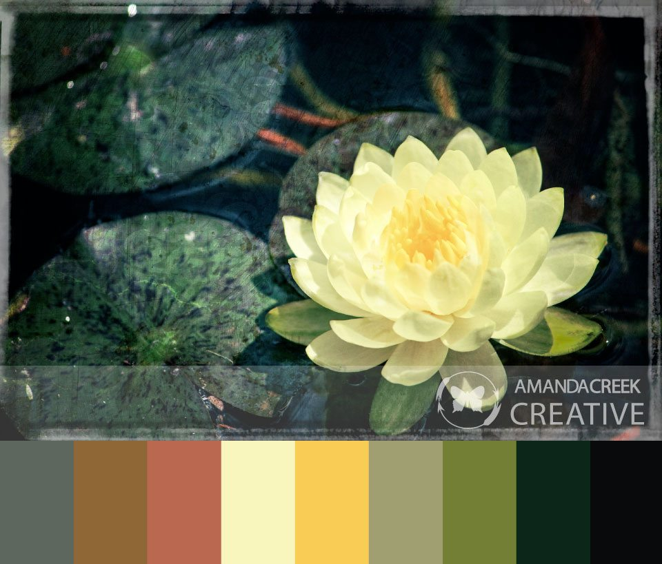 Color-Palette-3